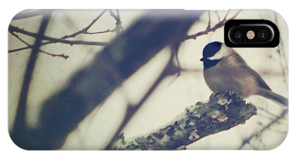 Chickadee iPhone Case - Against The Wind by Amy Tyler