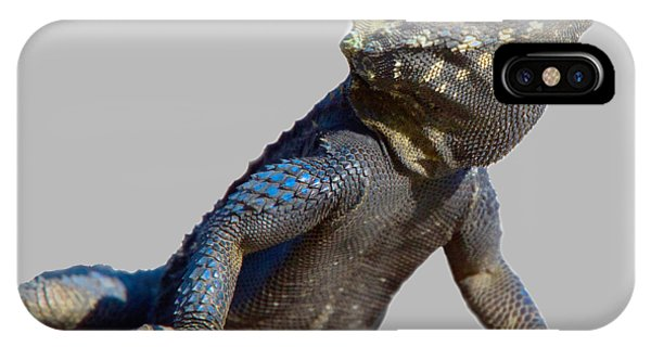 Agama Basking On A Rock T-shirt IPhone Case