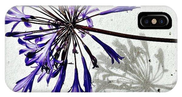 iPhone Case - Agapanthus by Julie Gebhardt