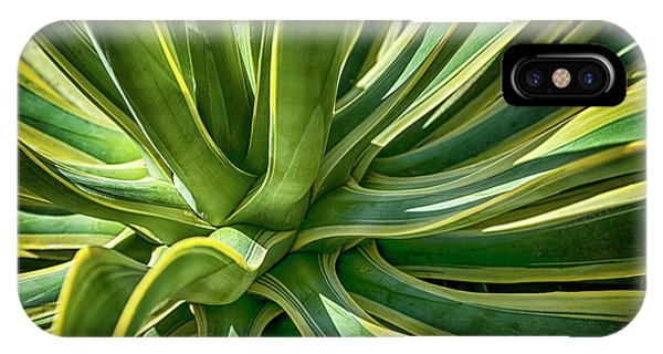 Agave Burst 2 IPhone Case