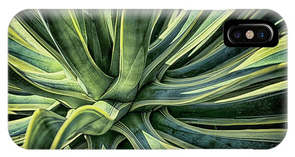 Agave Burst 3 IPhone Case