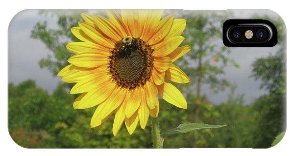 Ah, Sunflower IPhone Case