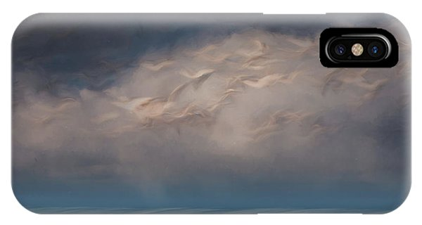 Born To Fly IPhone Case