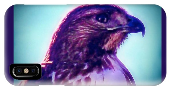 Ak-chin Red-tailed Hawk Portrait IPhone Case