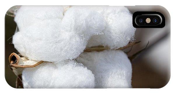 Alabama Cotton Boll IPhone Case