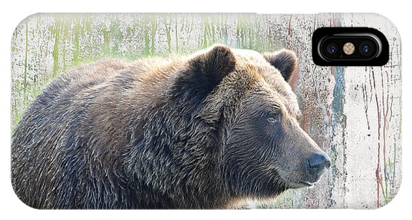Alaska Brown Bear  IPhone Case