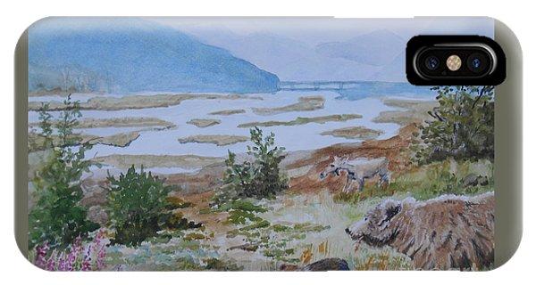 Alaska - Denali 2 IPhone Case
