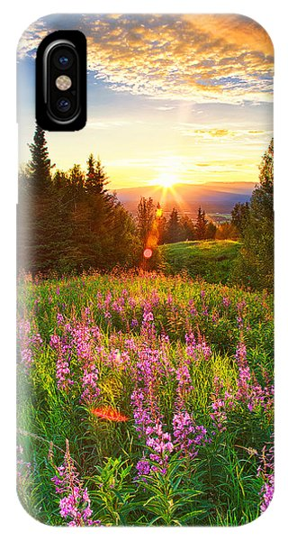 Alaska Field IPhone Case