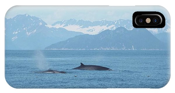 Alaska Finback Whales IPhone Case