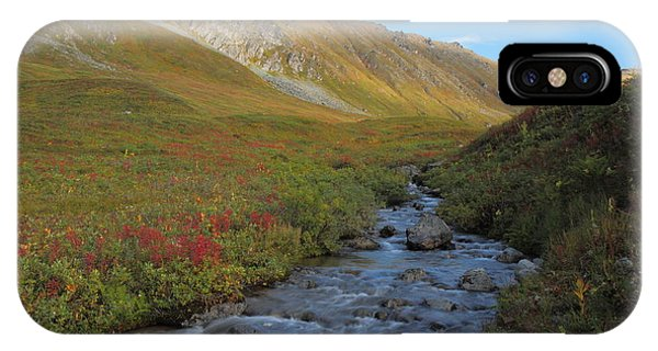 Alaska Fireweed And Willow Creek Along Hatcher Pass Road IPhone Case