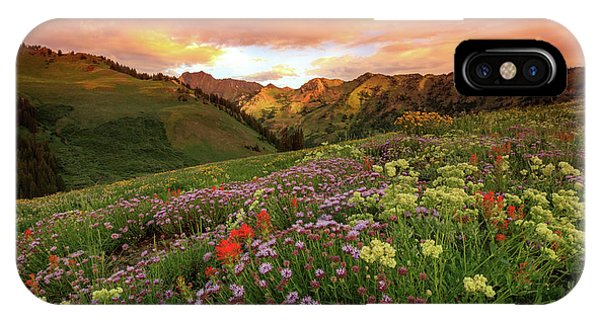 Albion Basin Golden Sunrise IPhone Case