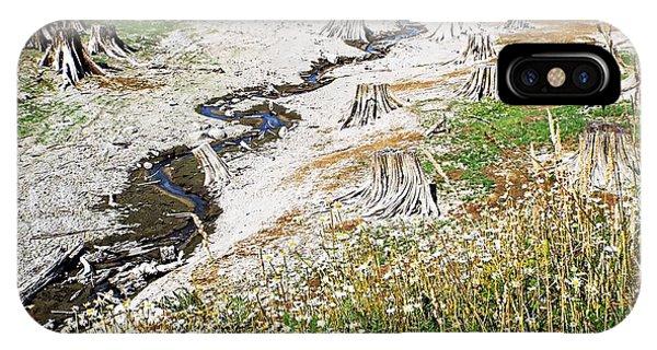 Alder Lake Stumps IPhone Case