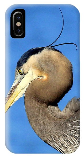 Alfalfa IPhone Case