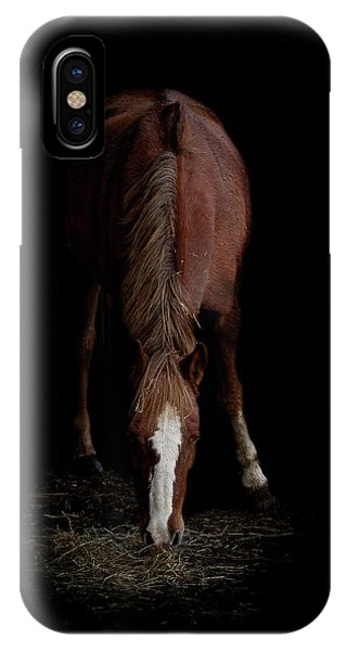 Equine iPhone Case - Alfresco by Paul Neville