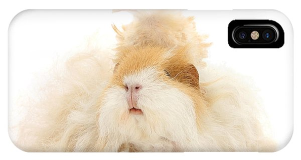 All Frizzed Up And Ready To Go IPhone Case