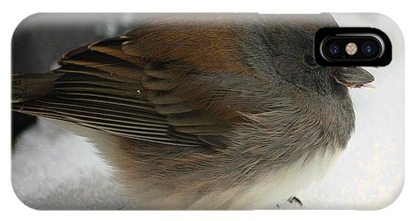 All Puffed Up IPhone Case
