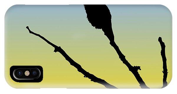 Allen's Hummingbird Silhouette At Sunrise IPhone Case