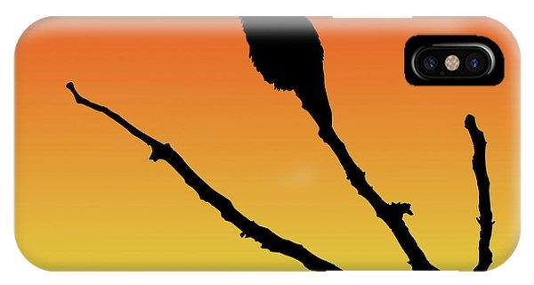 Allen's Hummingbird Silhouette At Sunset IPhone Case