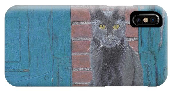 Alley Cat IPhone Case
