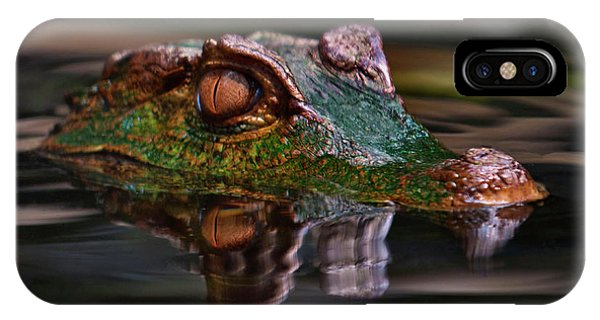 Alligator Above Water Reflection IPhone Case