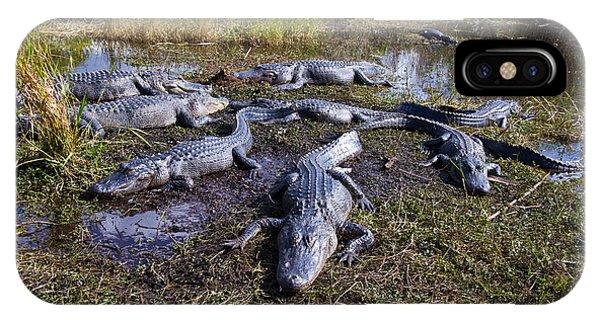 Alligators 280 IPhone Case