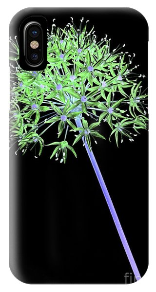 iPhone Case - Allium 2 On Black by Tony Cordoza