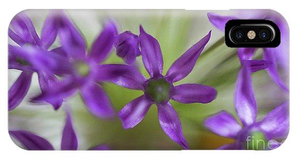 Allium Aflatunense IPhone Case