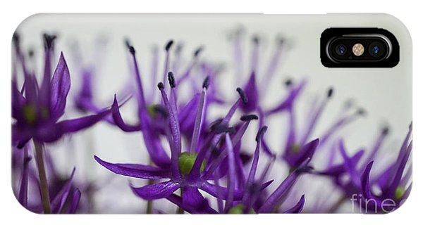 Allium Aflatunense Sideview IPhone Case