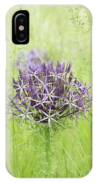 Allium Christophii IPhone Case