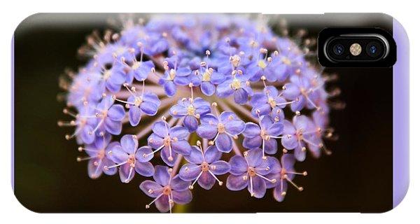 Allium Floral IPhone Case
