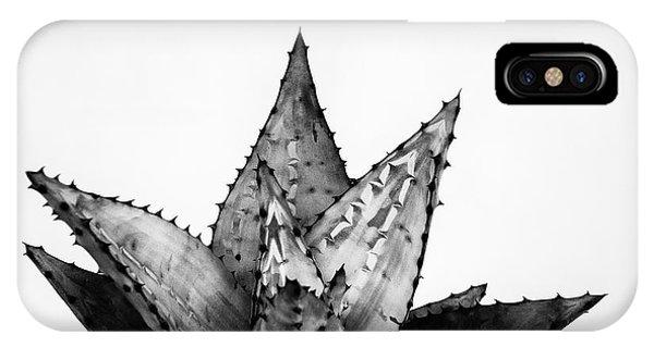 Succulent iPhone Case - Aloe Cactus by Ana Martinez