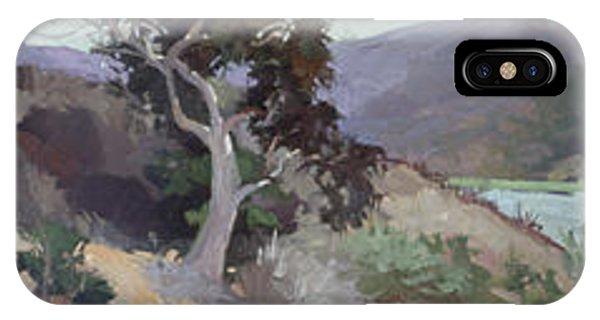 Betty Billups iPhone Case - Along The Shore - Plein Air  Catalina Island by Betty Jean Billups