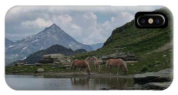 Alps' Horses IPhone Case