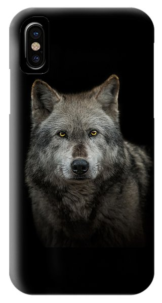 Male iPhone Case - Alpha Male  by Paul Neville