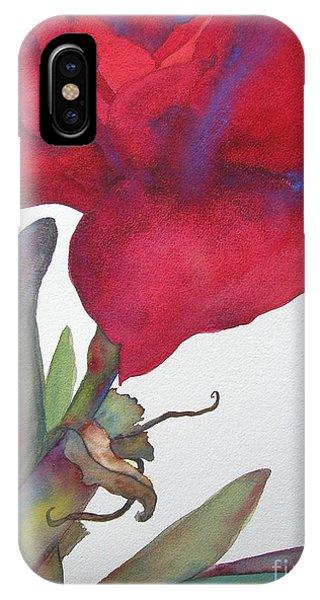 Amaryllis iPhone Case - Amaryllis 2 by Jeff Friedman