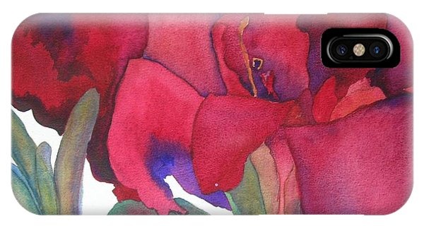 Amaryllis iPhone Case - Amaryllis 3 by Jeff Friedman
