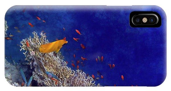 Amazing Red Sea 2 IPhone Case