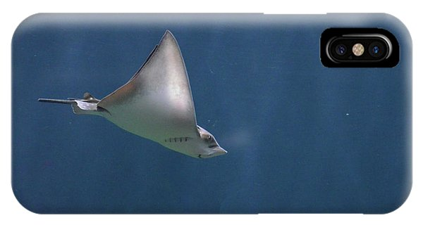 Amazing Stingray Underwater In The Deep Blue Sea  IPhone Case