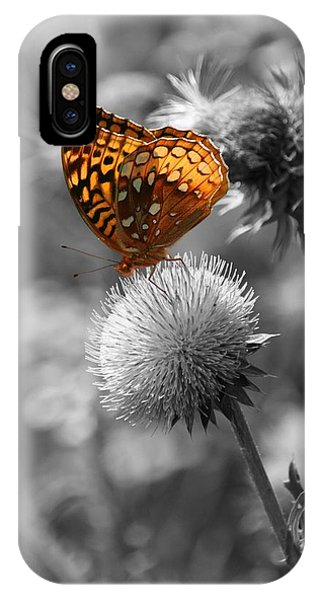 Amber Butterfly Colorized IPhone Case
