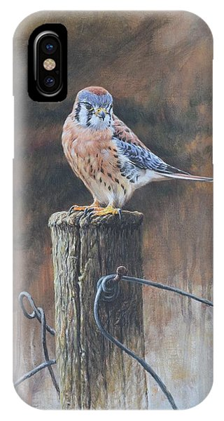 IPhone Case featuring the painting American Kestrel by Alan M Hunt