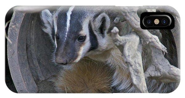 American Badger Habitat IPhone Case