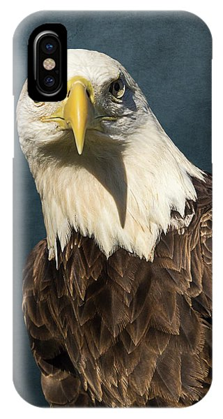 American Bald Eagle Portrait II IPhone Case