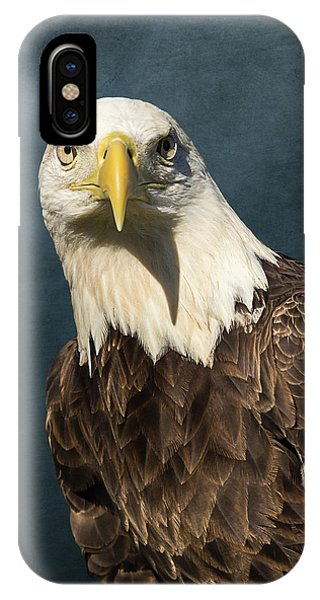 American Bald Eagle Portrait II IPhone Case