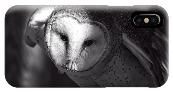 American Barn Owl Monochrome IPhone Case