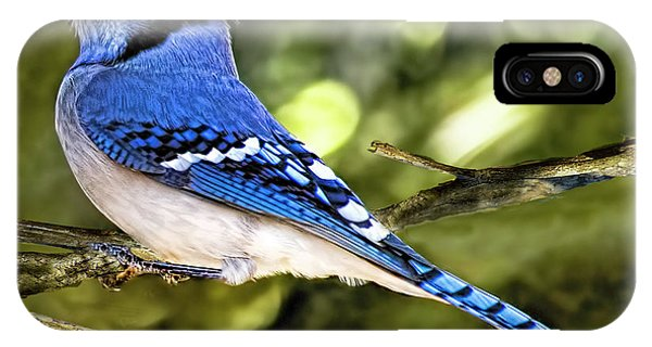 Blue Jay Bokeh IPhone Case