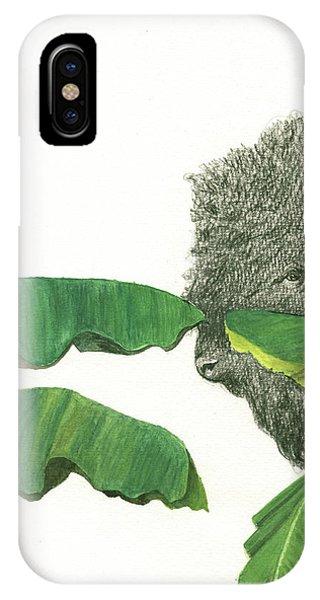 Banana iPhone Case - American Buffalo 1 by Juan Bosco