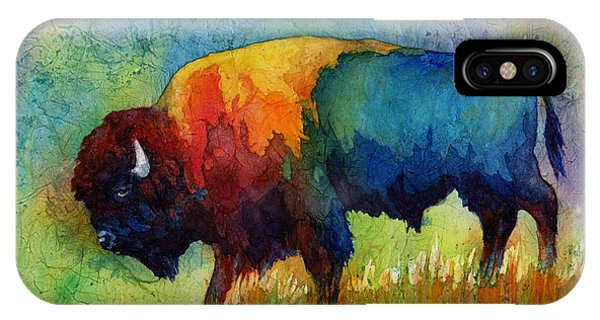 Colorful iPhone Case - American Buffalo IIi by Hailey E Herrera