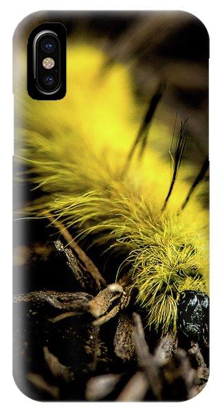 American Dagger Moth Caterpillar IPhone Case