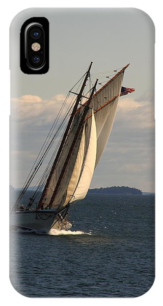 American Eagle In A Good Wind IPhone Case