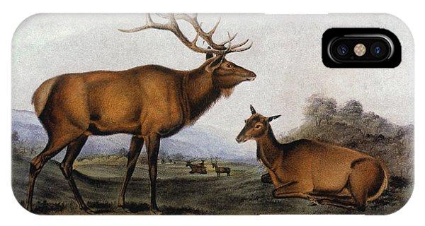Audubon iPhone X Case - American Elk, 1846 by Granger